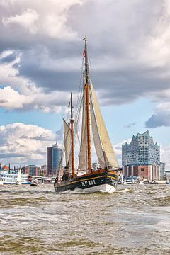 Traditioneel schip voor de Elbe Philharmoniehal van Sabine Wagner