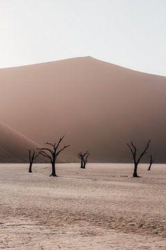 Das Deadvlei im Sossusvlei Nationalpark, Namibia von Maartje Kikkert