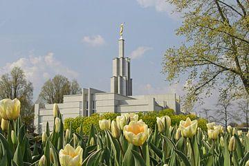 Den Haag tempel van M Aarts