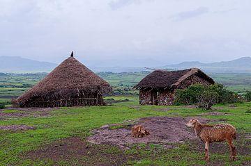 Ethiopië: Woning (Dogoro) van Maarten Verhees