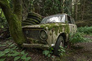 Oude Lada met boom door grill