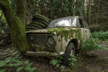 Oude Lada met boom door grill sur Kristel van de Laar