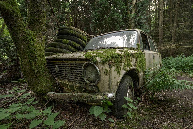 Oude Lada met boom door grill von Kristel van de Laar