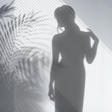 Game of Shadows von Marja van den Hurk