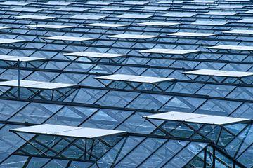Unendliches Glasdeck mit Lüftungsfenstern eines Gartenbau gewächshauses von Gert van Santen