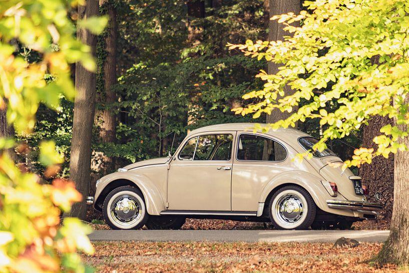 VW Beetle of de Volkswagen Type 1 klassieke auto in het bos van Sjoerd van der Wal