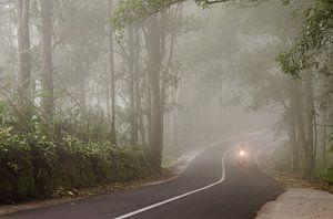 Motorbike in the mist, Bali van
