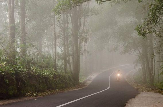 Motorbike in the mist, Bali van Olivier Van Acker