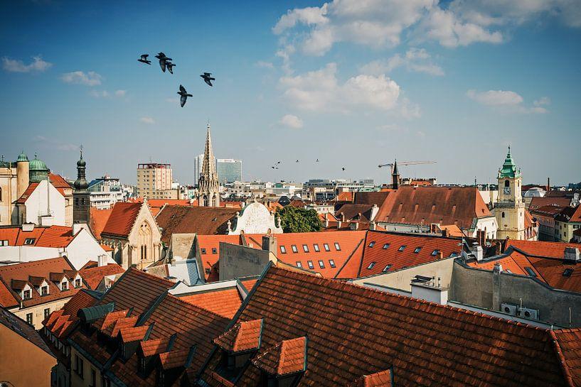 Bratislava - Oude Stad / Daklandschap van Alexander Voss