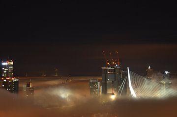 Rotterdam Wereldstad van Marcel van Duinen