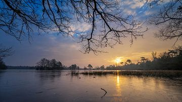 Leersumse Veld von Sander Peters Fotografie