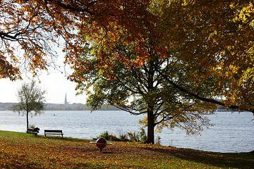 Außenalster, Alster, Herbst, Hamburg