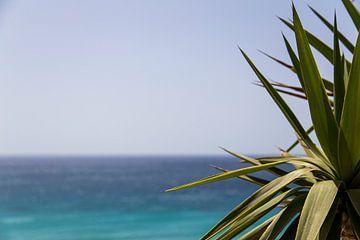 Fuerteventura van 2BHAPPY4EVER.com photography & digital art