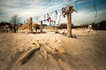 Netwerken met strandvondsten. van Sonja Pixels