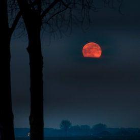 Het Maan Mysterie van Rop Oudkerk