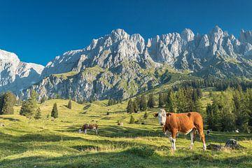 Muhlbach am Hochkönig in Oostenrijk