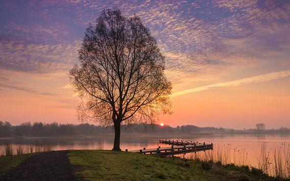 Ochtend aan het meer van Marga Vroom