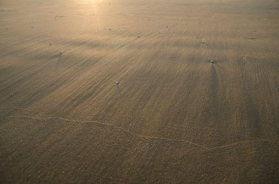 Wind en zon op het strand
