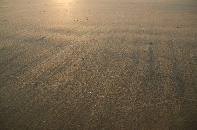 Goud zand in de wind fotoprint van Manja Herrebrugh - Outdoor by Manja