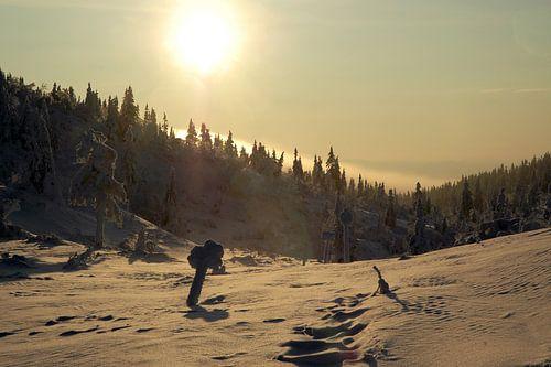 Zweeds winterlandschap bij zonsondergang