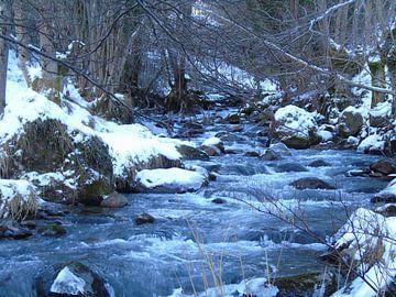 rivier in de pyreneen von Mirjam Jezewski