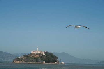 Alcatraz island van