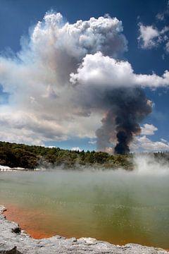 Feu de forêt dans la zone géothermique de Wai-o-Tapu, Rotorua, Nouvelle-Zélande. sur Christian Müringer