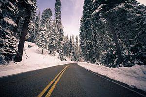 De weg door de sneeuw van