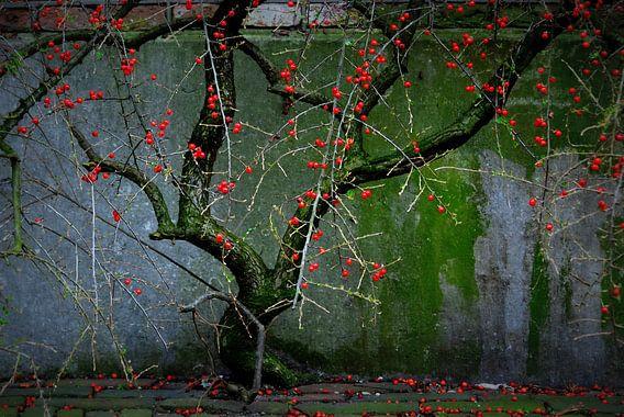 boompje met bessen van Annemie Hiele