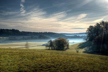 Morgennebel von Kilian Schloemp