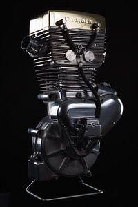 Harley-Davidson motorblok van Michelle Peeters