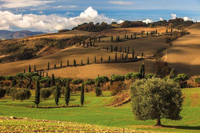 Sweet Tuscany van Marc Smits