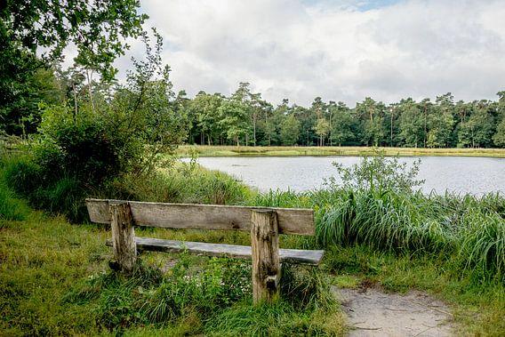Wandelbankje aan het water in het Mastbos in Breda
