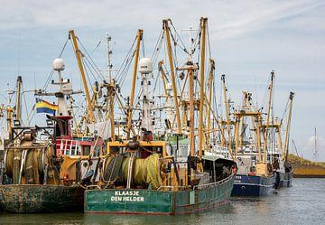 Visserschepen in de haven Den Oever. van scheepskijkerhavenfotografie
