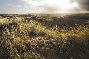 In de duinen van Martijn van Huffelen