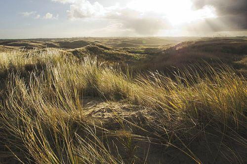 Dunes landscape von Martijn van Huffelen