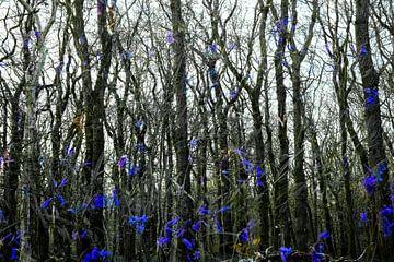 abstrakte Waldlandschaft von Ed Klungers