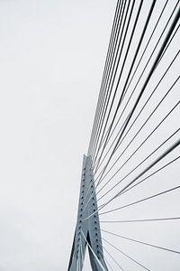 Verdrahtung der Erasmusbrücke von Michael Jansen
