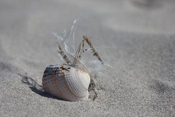 Stilleven op het strand van Terschelling van Nynke van der Ploeg