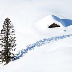 Einsame Hütte im Schnee von Frank Herrmann
