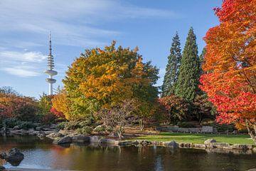 Fernsehturm, Japanischer Garten, Herbst, Hamburg von Torsten Krüger