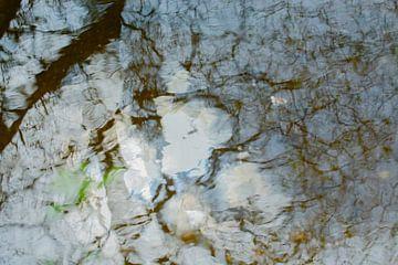 Waterreflectie van Nanda Bussers
