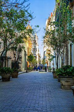 Typische straat in Havana, Cuba van Joke Van Eeghem