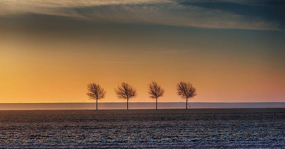 Sunset over the trees van Reint van Wijk