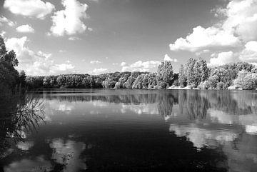 Am See von Norbert Sülzner