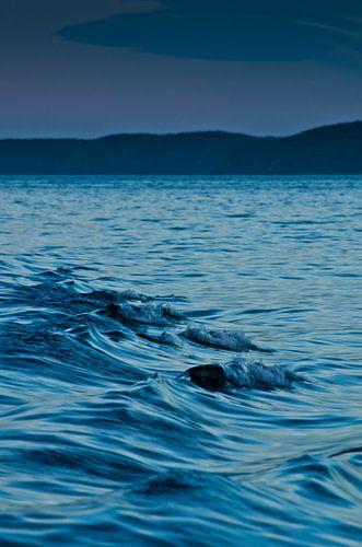 Waves near Glory Cove van Ricardo Bouman | Fotografie