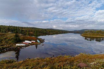 Landschap van Noorwegen tijdens de herfst.