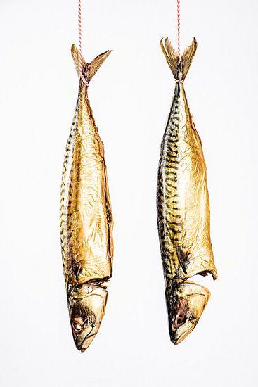 twee hangende makrelen tegen een witte achtergrond