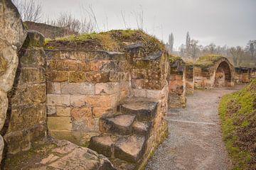 Mittelalterliche Burgruine Valkenburg, die Niederlande von Janet Kleene