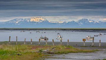 Kenai rivier, Alaska tijdens de zalmen trek  van